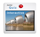 interactive Junior  Quiz